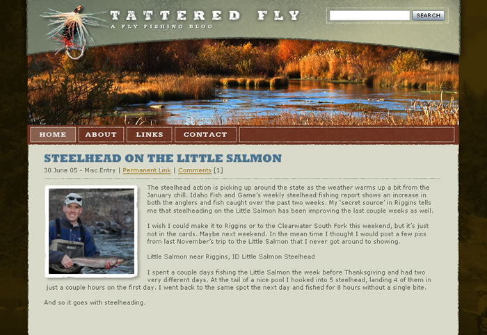 Image of the tatteredfly.com home page before the redesign